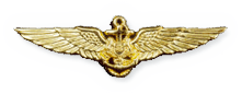 Mission Crew Wings