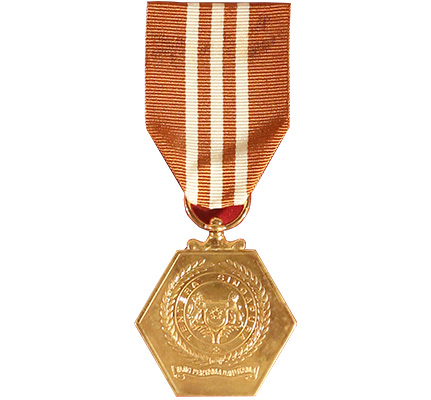 SAF Long Service & Good Conduct (10 Years) Medal