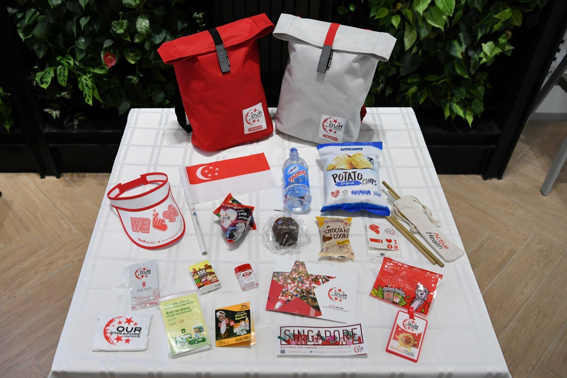 SUSTAINABLE FUNPACKS FOR NDP 2019